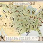 State Bird And Flower Map Of The United States.   David Rumsey | United States Quarter Map Printable